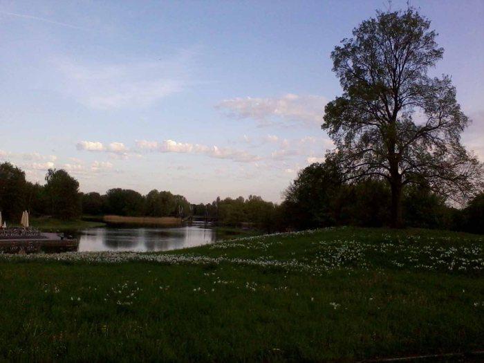 Auch wenn sie steht, die Natur bewegt 2012-04-30 _ew